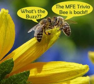 MFE Trivia Bee